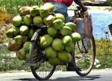 coconut water, myth or reality?